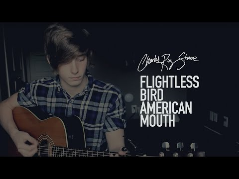 Charles Ray Stone - Flightless Bird, American Mouth - Iron And Wine (Cover)