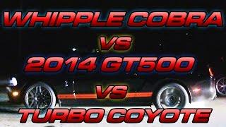 Turbo Mustang Vs 2014 GT500 Vs Whipple Cobra