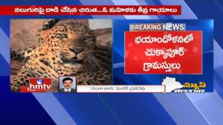 Leopard attacks four; woman seriously injured