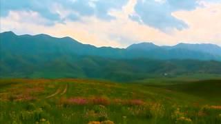 Нұрислам Қаржан - Нұрлы арман