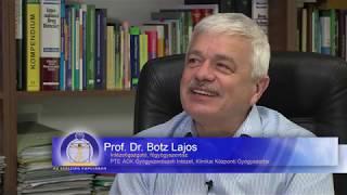 Kitüntetést vehetett át dr. Botz Lajos professzor