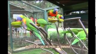 Calor�o faz parque inovar na forma de alimenta��o dos animais em Betim