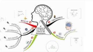 PNL. El triangulo niveles lógicos del pensamiento
