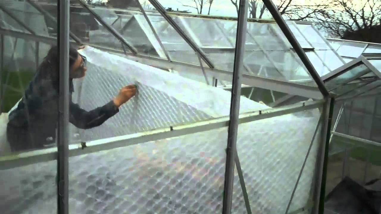 Putting Bubble Plastic On Greenhouse To Grow Chillies