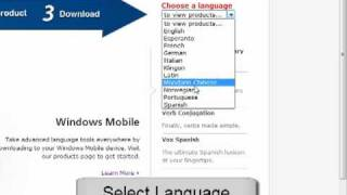 How To Install A Dictionary (Windows)