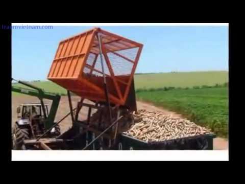 Công nghệ thu hái cam tại Nhật Bản - Canh tác nông nghiệp tại Nhật