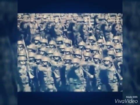 الفيديو الدي ارعب العالم و الجزائر خاصة