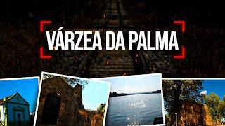 Várzea da Palma