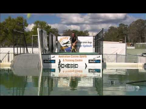 DockDogs featured on Better Homes and Gardens