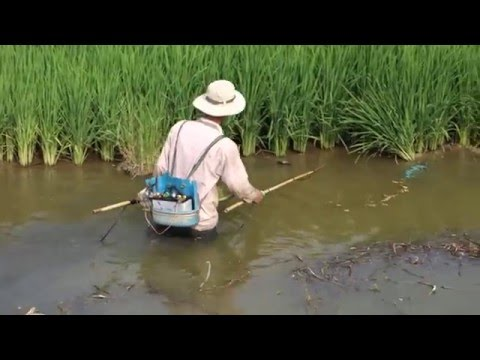 Fishing with Electricity in Vietnam 2014 HD