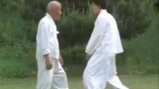 韓国武芸・民間遊戯Taekkyeon、宋徳基老師