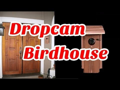 Dropcam Birdhouse