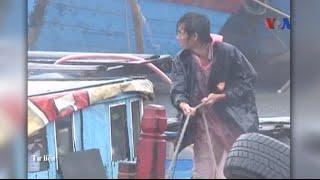 Việt Nam báo động bão Mujigae