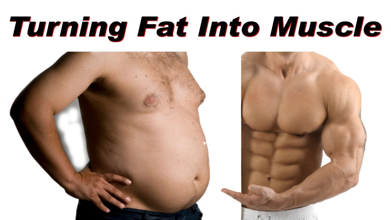 Diet To Burn Belly Fat And Build Muscle