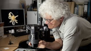 High-tech Photography: Tiny creatures in focus