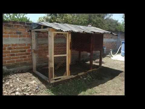 Gallinero con madera Reciclada de tarimas, Colima, Col., México.