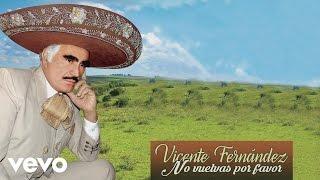 Vicente Fernández - No Vuelvas por Favor