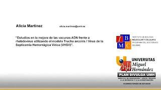 Doctorado IBMC - Estudios en la mejora de las vacunas ADN