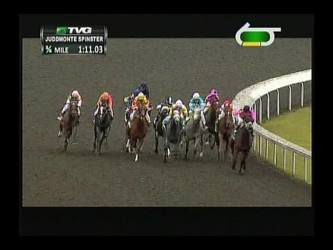 2013 Spinster Stakes