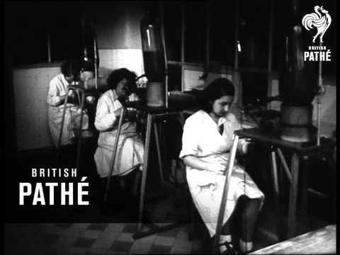 Cholera Fight At Pasteur Institute (1947)