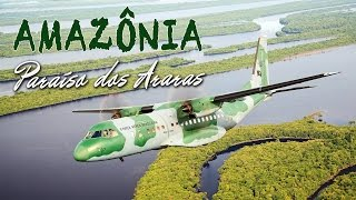 Assista neste vídeo com imagens vibrantes uma homenagem do 1º/9º Grupo de Aviação (Esquadrão Arara), sediado em Manaus (AM), à floresta e ao povo que nos inspiram ir cada vez mais longe. Uma produção do Esquadrão Arara com apoio do CECOMSAER.