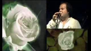 ТІК - Белые розы