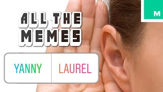 Yanny or Laurel? - All The Memes