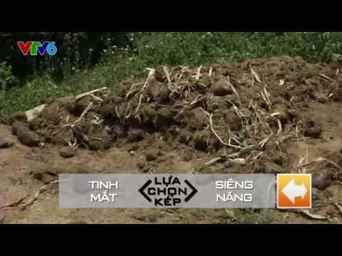 Cuộc Đua Kỳ Thú 2014 - Chặng 4 - Phần 1 - Nghệ An - Phát sóng 12/07/2014 - FULL HD