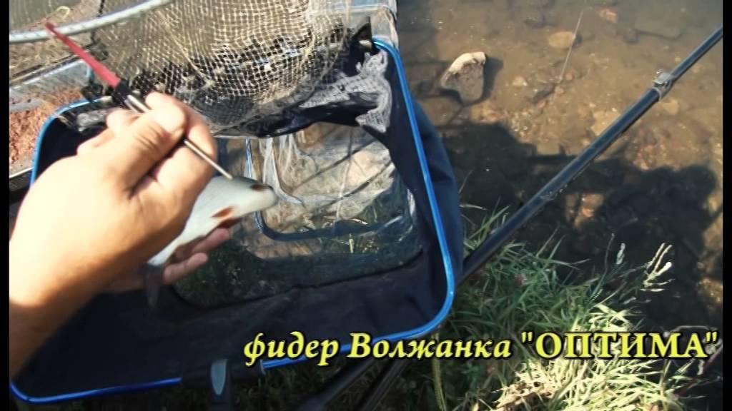 видео ловля на фидер с салапиным