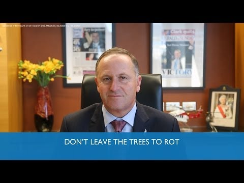 John Key PM: Don't leave the trees to rot