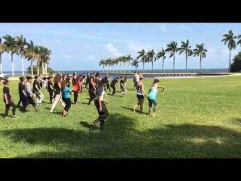 Water Dance Project at Deering Estate
