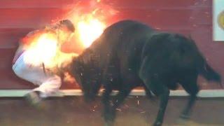Encierro de toros - Hombres arriesgados