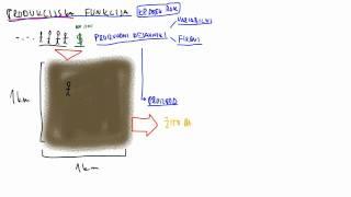 17. Produkcijska funkcija