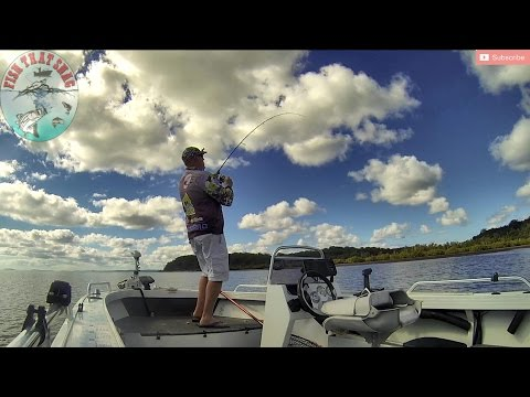 Fish That Snag - VLOG Series - Flathead Strike