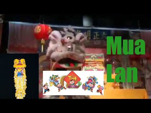 Lion dance 2014 - mua lan