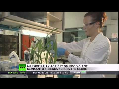 Global Anti-GMO Protests & Monsanto Monopoly of Crop Seeds