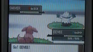 How To Evolve Eevee Into Glaceon Pokemon Platinum