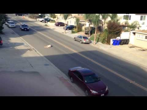 Real life Grand Theft Auto Assailant Gets Some Sweet, Sweet Street Justice/Instant Karma.