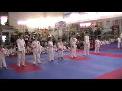 Аттестация клуба Тигренок 18 мая 2014.Часть 1