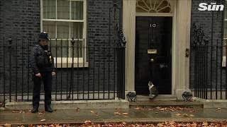 Momento divertido en Downing Street
