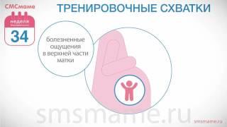 Родильный дом - Петропавловск-Камчатская городская больница