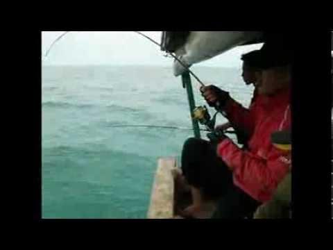 Bsc Fishing trip 5