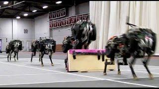 MIT cheetah robot saltando obstaculos