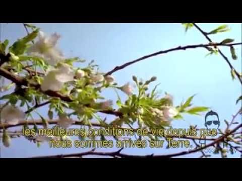 image vidéo La terre , humains , la vérité !