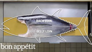 How To Butcher a Whole Tuna: Every Cut of Fish Explained | Handcrafted | Bon Appétit