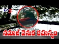 Viral Video : The Secret of Namaz On Neem Tree Revealed..