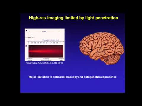 James Schuck: Optimizing Nanocrystals for Deep-Tissue Imaging