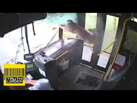 Deer smashes through bus window - Truthloader