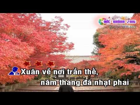 (Karaoke) Nghĩ chuyện ngày Xuân - Beat tone Nam