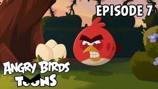Angry Birds Toons II - 7. Presne tak